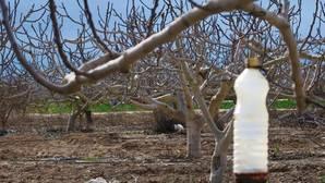 La Comunidad Valenciana se seca: el déficit de lluvias alcanza el 40% en el último año