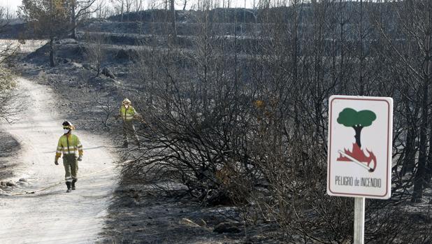 Imagen de los efectos del incendio en la Granadella