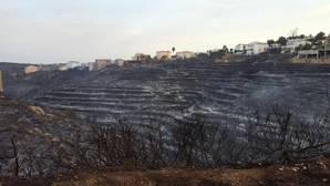 El fuego deja un paisaje desolador en Jávea: «Ha sido apocalíptico»