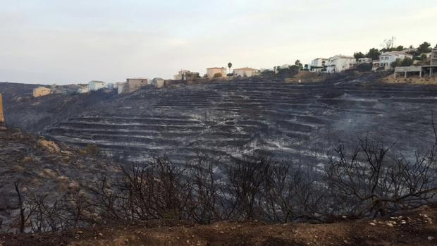 Imagen de parte de la superficie afectada por el incendio