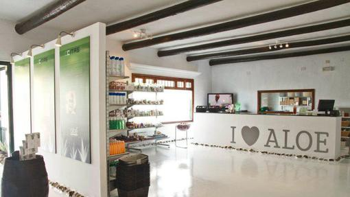 El 95% de la plantilla de Aloe Plus Lanzarote son mujeres