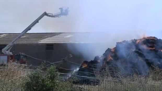 El incendio no ha afectado a los miles de animales que tiene esta granja de Tauste (Zaragoza)