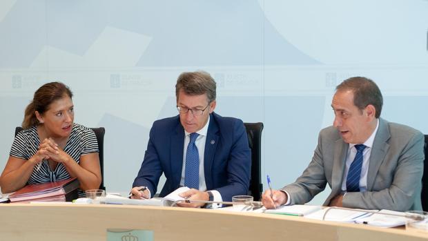 Alberto Núñez Feijóo ha presidido este jueves la reunión de su gabinete