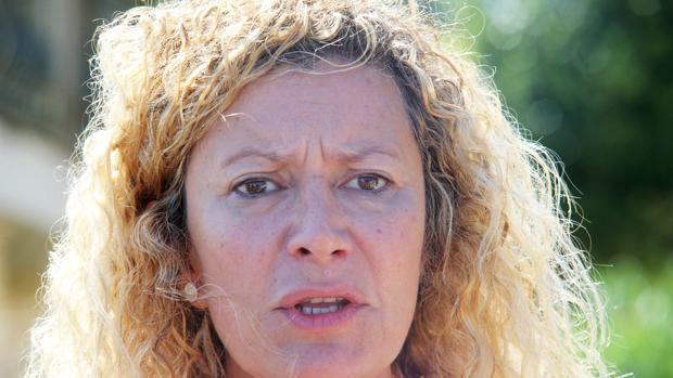 La madre de Diana Quer en una declaración ante los medios