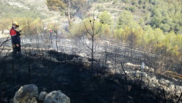 Zona afectada por el último incendio, declarado en Llíber
