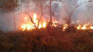 Extinguido el incendio en Gaibiel causado por un rayo