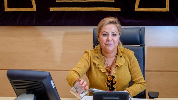 Rosa Valdeón, vicepresidenta de Castilla y León