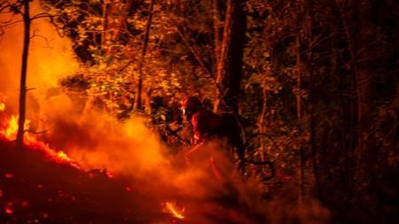 Dos brigadistas luchan contra las llamas durante el fuego de Entrimo