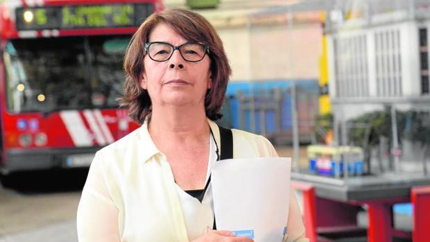 Inés Sabanés, concejal de Movilidad