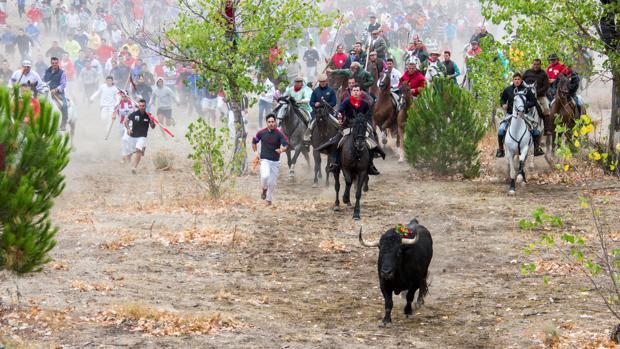 El ya extinto Toro de la Peña, en una pasada edición