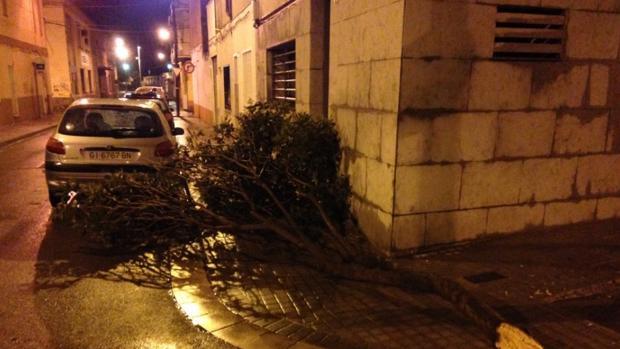 Destrozos causados por el tornado en Badalona