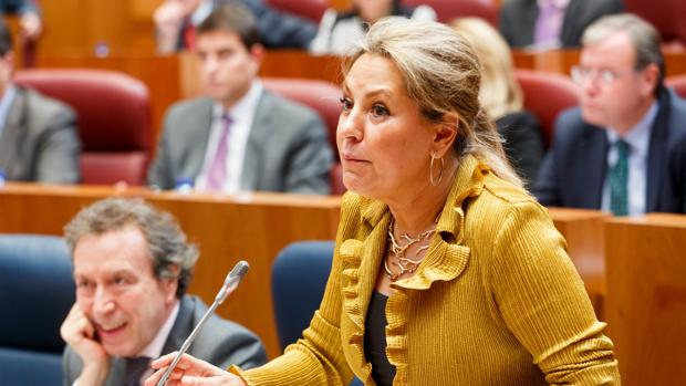 La exvicepresidenta y procuradora Rosa Valdeón, en una imagen de archivo