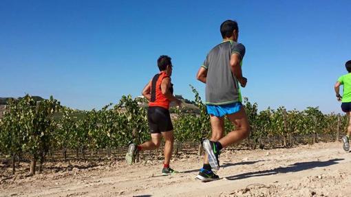 Algunos corredores en ediciones pasadas de «Corriendo entre viñas»