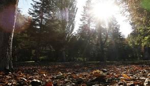 El otoño será más caluroso de lo normal, con pocas precipitaciones