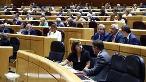 El PP propone al Senado un pacto por la regeneración que suprima aforados
