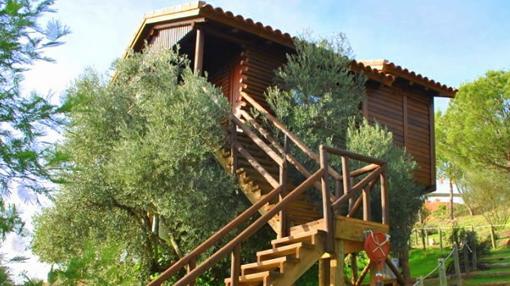 Cabaña nido, rodeada de naturaleza