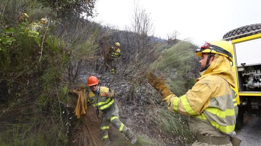 Los bomberos estuvieron durante toda la tarde intentando aplacar el fuego