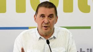 Los líderes de Unidos Podemos ven la inhabilitación de Otegui como «una mala noticia» y «una cacicada»