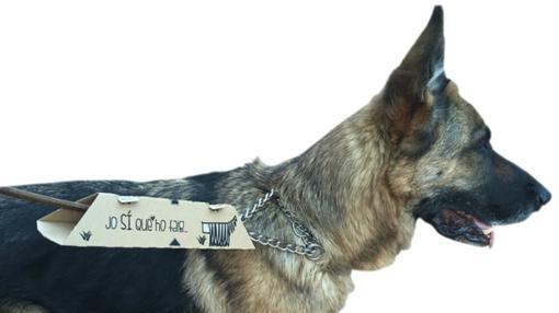 El utensilio se puede llevar asido a la correa del perro