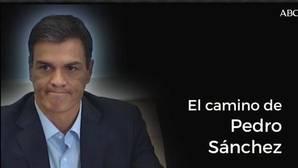 Ascenso y declive de Pedro Sánchez en el PSOE