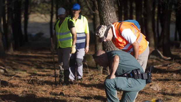 Voluntarios buscan pistas de Diana Quer en una batida a comienzos de septiembre