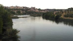 ¿Hay vida en el río Tajo más allá del trasvase?