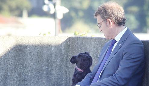Feijóo, con su perra