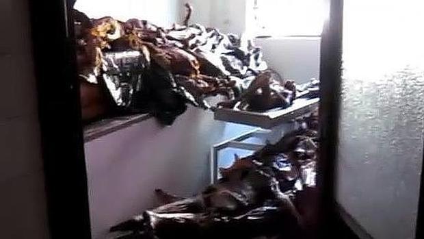 Cadáveres hacinados en el depósito de la Universidad Complutense