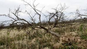La Comunidad Valenciana cierra el año hidrológico con un déficit de entre el 50% y el 75% de lluvias