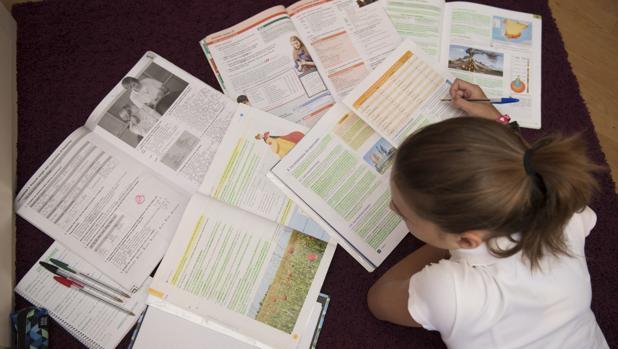 El Consejo Escolar, sobre los deberes: «No hay que considerarlos como un castigo sino como un aprendizaje»