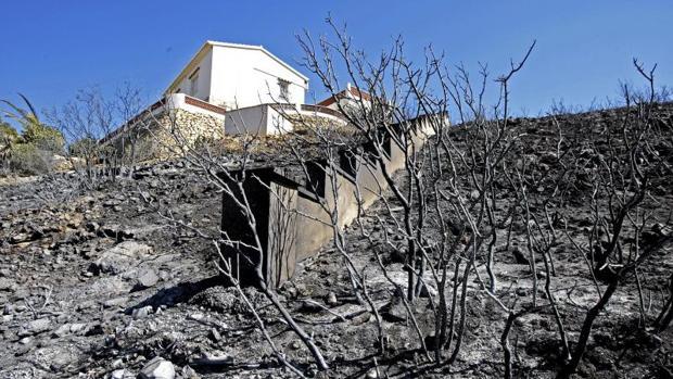 Terrenos calcinados por el incendio en Jávea