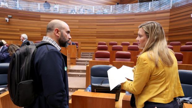 La consejera de Hacienda, Pilar del Olmo, conversa con el procurador de Podemos Ricardo López, durante el Pleno de las Cortes de este martes