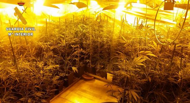 Había instalado unsistema de ventilación, riego e iluminación para qiue crecieran las plantas