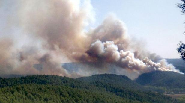 Incendio forestal en Enguídanos