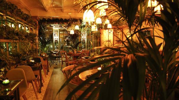 El Invernadero: un oasis urbano «underground»