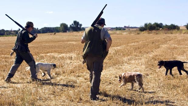 Desde el sábado hasta el 8 de febrero está abierta la veda en caza menor