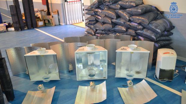Desmantelado un laboratorio clandestino de cultivo de marihuana en un chalet de Valparaíso