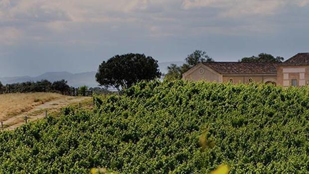 Bodegas Arrayán está instalada en Santa Cruz del Retamar, en Toledo