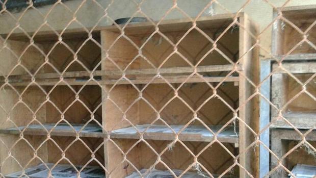 Fotografía de las instalaciones de la perrera La Bolgachina