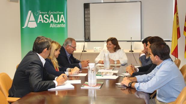 Reunión de representantes de Asaja y del PP de la Comunidad Valenciana en Alicante