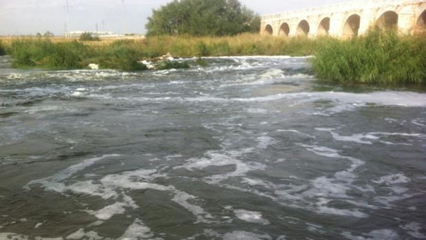 La espuma aparecida el sábado en Toledo venía, como mínimo, de Aranjuez. Así lo ha venido defendiendo la Junta de Castilla-La Mancha, que este martes facilitó a ABC unas imágenes, tomadas el domingo, que lo acreditan