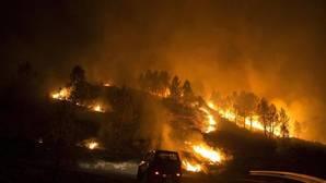 Uno de los incendios más virulentos de este 2016 aconteció en Entrimo (Orense)