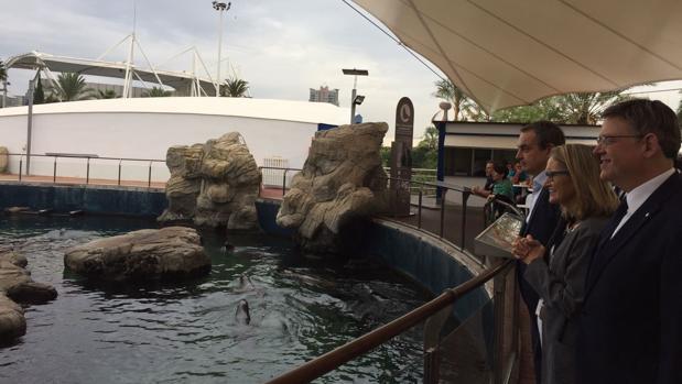 Zapatero y Puig, ayer en su visita al Oceanogràfic de Valencia