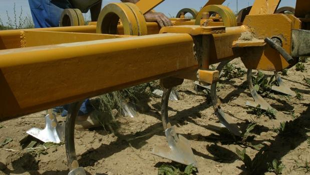 Los trabajadores que han denunciado trabajaban en una explotación agrícola
