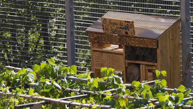 El «hotel de insectos» que hay en el huerto del centro de salud de Carabanchel