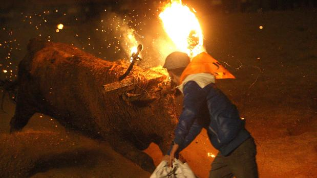 Celebración del Toro Jubilo en Medinaceli (Soria)