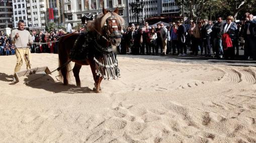 Demostración en el secadero urbano de arroz