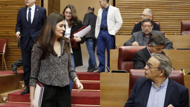 La consellera de Sanidad, Carmen Montón, en las Cortes