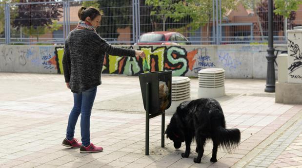 Una dueña tira la caca de su perro a una papelera