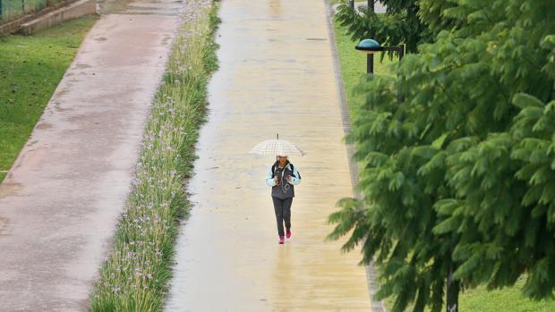 Imagen de la jornada de lluvia de ayer en Valencia